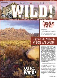 NOW IT'S FOREVER - New Mexico Wilderness Alliance