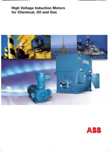 High Voltage Induction Motors for Chemical, Oil and Gas EN 02-2008