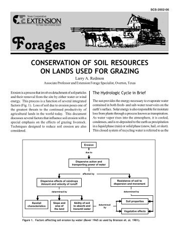 Conservation of Soil Resources on Lands Used for Grazing - Forages