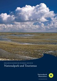Nationalpark und Tourismus - Nationalpark Wattenmeer