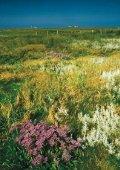 Nationalpark und Tourismus - Nationalpark Wattenmeer - Seite 4