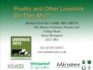 Poultry and other livestock – do they mix? - Eblex