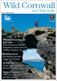 Wildlife of Cornish soil and rocks From mosses to mammals ...