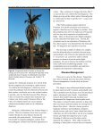 Fusarium Wilt of Canary Island Date Palm1 - University of Florida - Page 4