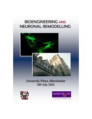 to download the meeting programme - British Neuroscience ...
