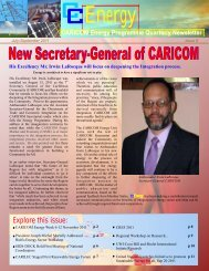 CC-Energy Newsletter Iss. 8 - Carilec