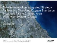 Development of an Integrated Strategy for Meeting Dissolved ...