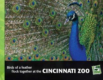 Birds Of A Feather   The Cincinnati Zoo U0026 Botanical Garden