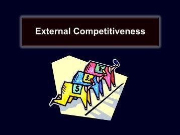 Exhibit 7.5: What Shapes External Competitiveness?