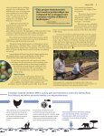 Read More - African Wildlife Foundation - Page 5