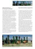 Geschäftsbericht 2004/2005 - International Takhi Group - Page 6