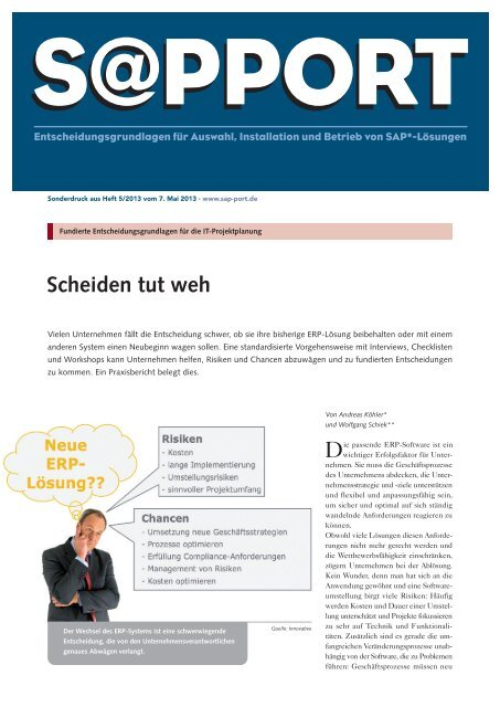 Download Innovabee-Artikel in S@pport