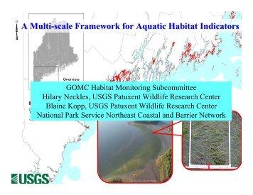 A Multi-scale Framework for Aquatic Habitat Indicators - rargom