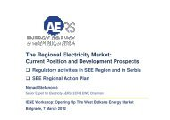 SEE Regional Action Plan Nenad Stefanović