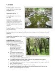 Quarterly Status on Projects and Programs - Sonoma County ... - Page 6