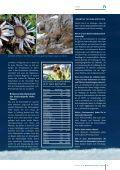 PDF-Download - Page 7