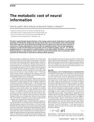 The metabolic cost of neural information - Systems Neurobiology ...