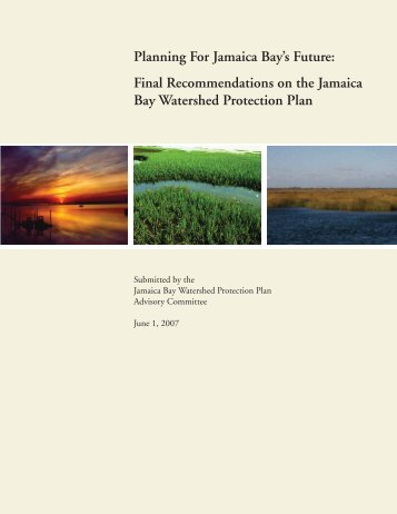 Planning For Jamaica Bay's Future: Final Recommendations on the ...
