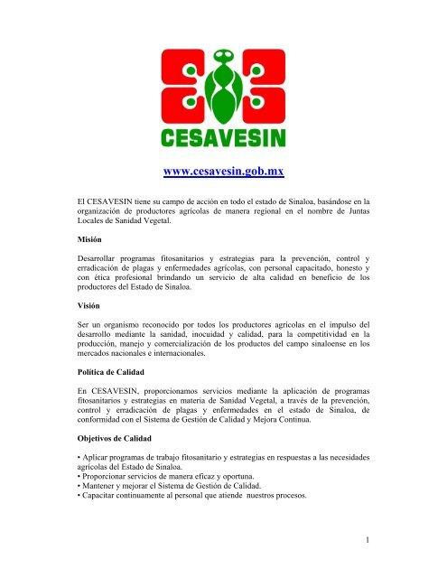 cesavesin - Soluciones Dinámicas