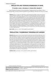 Prolactin anD thyroiD hormonEs in Dogs Prolactina y hormonas ...