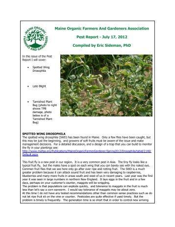 Maine Organic Farmers And Gardeners Association Pest Report ...