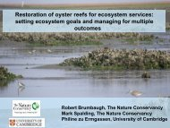 Restoration of oyster reefs for ecosystem services - Restore ...