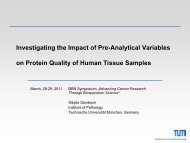 Investigating the Impact of Preanalytical Variables on Protein