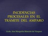 Incidencias en el Amparo por Margarita Monzón - Corte de ...