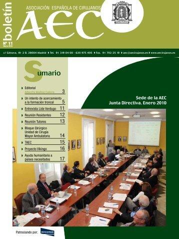 Boletín de la AEC: Nº 11 - AEC_____Asociación Española de ...