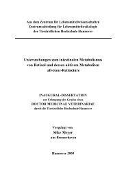 Untersuchungen zum intestinalen Metabolismus von Retinol und ...