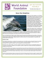 Save the Dolphins - World Animal Foundation