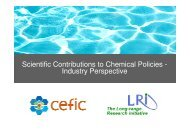 Industry Perspective - Cefic LRI