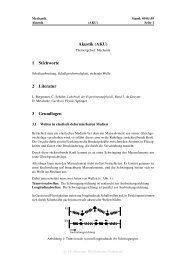 Akustik (AKU) 1 Stichworte 2 Literatur 3 Grundlagen - TUM Science ...