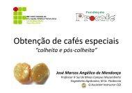 Obtenção de Cafés Especiais: cuidados na colheita e pós-colheita