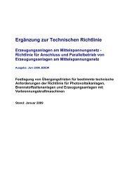 Ergänzung zur Technischen Richtlinie - Netz plus Service GmbH
