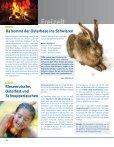 Zoom ansehen - Stadtwerke Nettetal GmbH - Seite 6