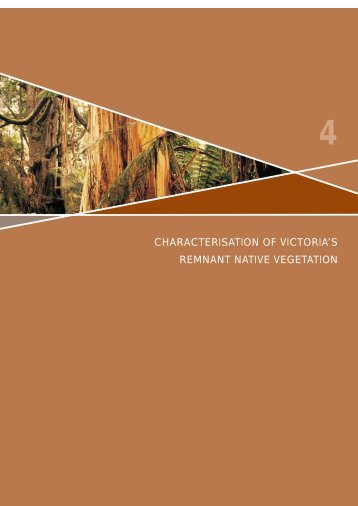 Chapter 4: Characterisation of Victoria's Remnant Native Vegetation
