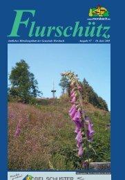 97. Ausgabe vom 18.06.2005 - Gemeinde Morsbach