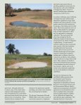 Endangered Species Bulletin - San Francisco Bay Joint Venture - Page 2
