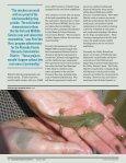 Endangered Species Bulletin - San Francisco Bay Joint Venture - Page 3