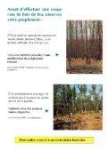 Le bois de chauffage - Page 4