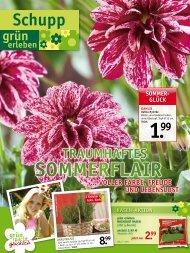 SOMMeR - Gartencenter Schupp