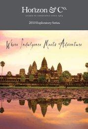 2010 Exploratory Brochure - Horizon & Co.