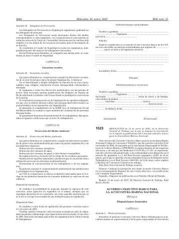 PDF (BOE-A-2007-1523 - 10 págs. - 473 KB ) - BOE.es