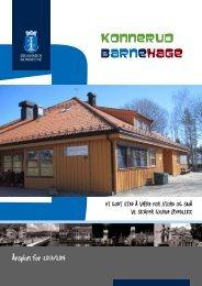 Årsplan 2013/2014 - Drammen kommune