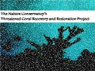 Threatened Coral Recovery And Restoration - U.S. National ...