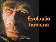 Evolução humana - Colégio Alexander Fleming