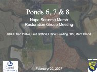 Item 5 - Ponds 6, 7 & 8 - Napa/Sonoma Marsh Restoration Project