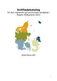 Bilag 1 - Region Midtjylland