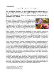 Om pollinatörernas överlevnad - IT - Lunds universitet